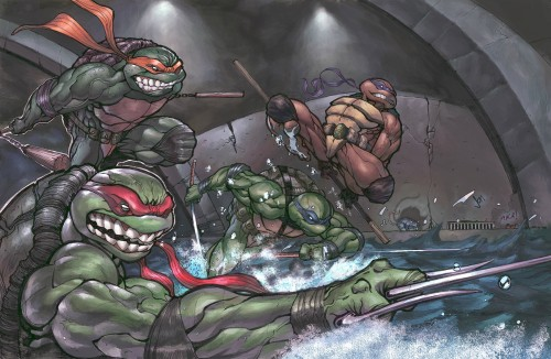 The Teenage Mutant Ninja Turtles In The Sewers