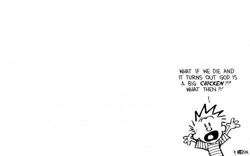 calvin wonders about big chickens