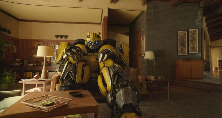 bumblebee in the living room